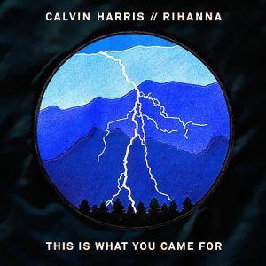 This Is What You Came For - Calvin Harris feat. Rihanna