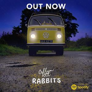 Rabbits de Callum Pitt