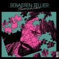 L'amour et la violence de Sébastien Tellier